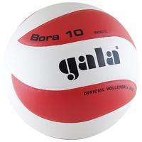 Мяч волейбольный Gala Bora 10 размер 5