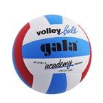 Мяч волейбольный Gala Akademy размер 5