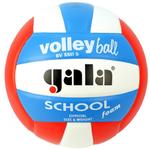 Мяч волейбольный Gala School 10 размер 5